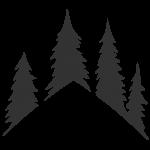 Little Log Homes, Muskoka, Huntsville, Bracebridge, Gravenhurst, Custom Design and Build